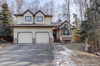 19400  Verdant Circle  , Eagle River, AK 99577 (MLS #15-3805) :: Rasmussen Properties
