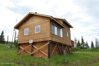 000  Woodhead Street  , Ninilchik, AK 99639 (MLS #15-3897) :: Rasmussen Properties