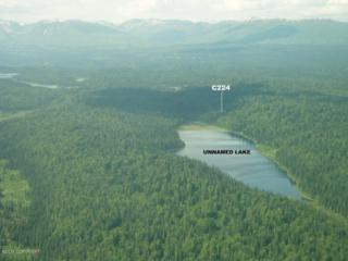 Tr A  Unnamed Lake  , Remote, AK 99000 (MLS #15-4179) :: RMG Real Estate Experts