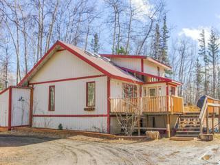 2461 S Tundra Rose Drive  , Wasilla, AK 99654 (MLS #15-5481) :: RMG Real Estate Experts