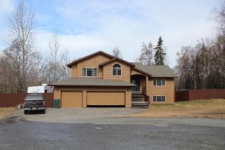 23211  Green Garden Circle  , Chugiak, AK 99567 (MLS #15-5622) :: RMG Real Estate Experts