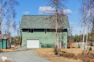 3274 S Kayak Circle  #10, Big Lake, AK 99652 (MLS #15-5823) :: RMG Real Estate Experts