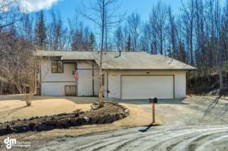 2000 N Cranberry Court  , Wasilla, AK 99654 (MLS #15-5836) :: RMG Real Estate Experts