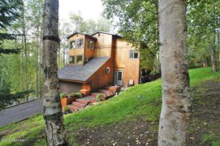 27333  Golden Eagle Court  , Chugiak, AK 99567 (MLS #15-7465) :: RMG Real Estate Experts