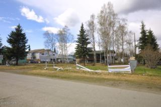 5411 E 5th Avenue  , Anchorage, AK 99504 (MLS #15-7721) :: RMG Real Estate Experts
