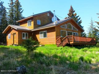 41175  Bidarki Drive  , Homer, AK 99603 (MLS #15-7962) :: Foundations Real Estate Experts