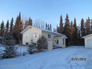 48800  Knutsen Avenue  , Soldotna, AK 99669 (MLS #15-854) :: Rasmussen Properties
