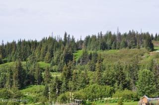 35925  North Fork Road  , Anchor Point, AK 99556 (MLS #15-926) :: Foundations Real Estate Experts
