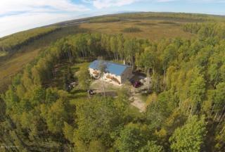 12468 S Knik-Goose Bay Road  , Wasilla, AK 99654 (MLS #14-13114) :: Foundations Real Estate Experts