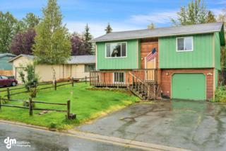 3710 E 65th Avenue  , Anchorage, AK 99507 (MLS #14-14056) :: Rasmussen Properties