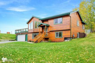 950 N Luke Street  , Wasilla, AK 99654 (MLS #14-14701) :: Foundations Real Estate Experts