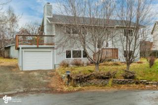 9000  Shaun Landing Circle  , Anchorage, AK 99502 (MLS #14-16486) :: RMG Real Estate Experts