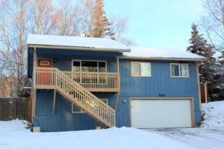 8001  Resurrection Drive  , Anchorage, AK 99504 (MLS #14-17547) :: RMG Real Estate Experts