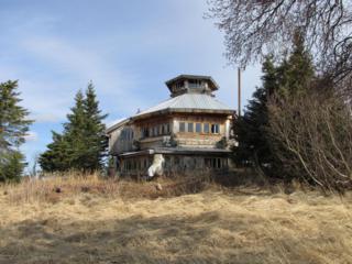 46182  Fox River Rem Sw  , Homer, AK 99603 (MLS #14-5316) :: Rasmussen Properties