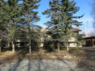 19513  Joy Avenue  , Chugiak, AK 99567 (MLS #15-5127) :: RMG Real Estate Experts