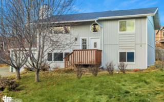9000  Shaun Landing Circle  , Anchorage, AK 99502 (MLS #14-16486) :: RMG Real Estate Experts
