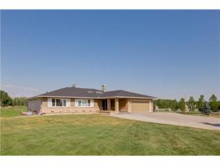 17177 E 306 Avenue  , Rural Foothills M.D., AB T1S 1A2 (#C3628958) :: The Cliff Stevenson Group