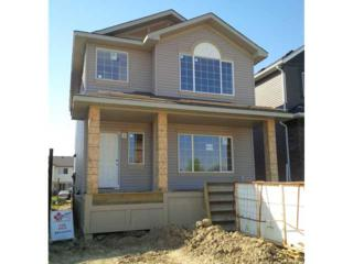 313 NW Nolanfield Way  , Calgary, AB T3R 0E9 (#C3628961) :: The Cliff Stevenson Group