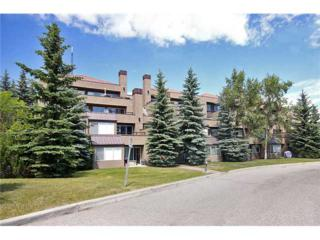 203 SW Village Terrace  9, Calgary, AB T3H 2L4 (#C3631804) :: Alberta Real Estate Group Inc.