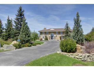 217  Pinnacle Ridge Place  , Rural Rockyview County, AB T3Z 3N8 (#C3633582) :: The Cliff Stevenson Group