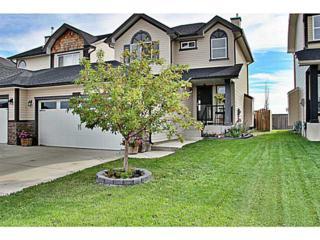 326  Ranch Ridge Court  , Strathmore, AB T1P 0A6 (#C3633587) :: The Cliff Stevenson Group