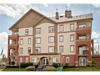2419 NW Centre Street  204, Calgary, AB T2E 2T8 (#C3633747) :: Alberta Real Estate Group Inc.