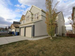 660 SE Copperfield Boulevard  , Calgary, AB T2Z 4L5 (#C3644396) :: McInnis Realty Group