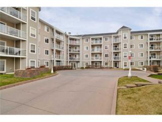 260 SE Shawville Way  312, Calgary, AB T2Y 3Z6 (#C3646611) :: Alberta Real Estate Group Inc.