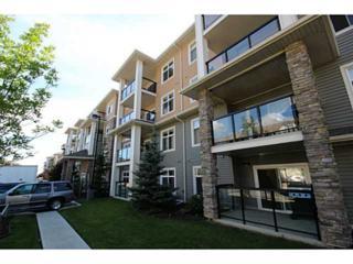11603  Ellerslie Road  420, Edmonton, AB T6W 0J3 (#E3388528) :: The Cliff Stevenson Group