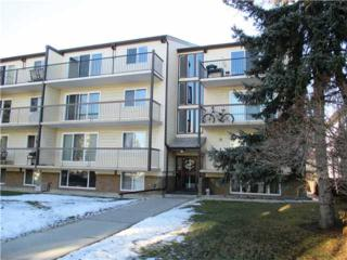 635 SW 56 Avenue  305, Calgary, AB T2V 0G3 (#C3650300) :: Alberta Real Estate Group Inc.