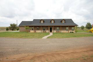 3474  County Road 5 N , Other - Not In List, TX 79094 (#13-79800) :: Caprock Realty Group