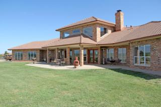 10220  County Road D  , Clarendon, TX 79226 (#14-84633) :: Caprock Realty Group