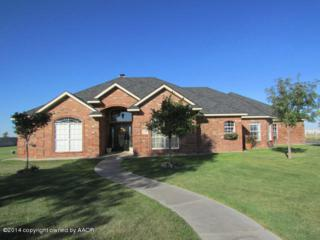 17250  White Wing Rd  , Canyon, TX 79015 (#14-86834) :: Lyons Realty