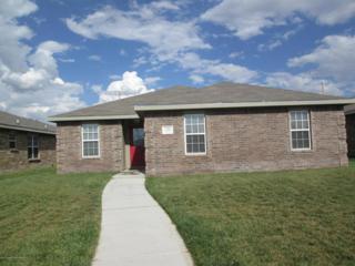 7105  Explorer Trl  , Amarillo, TX 79118 (#14-86958) :: Lyons Realty