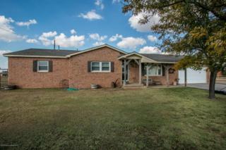 703  Fm 1151 E , Amarillo, TX 79118 (#14-87012) :: Lyons Realty