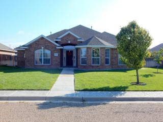 5811  Milam St S , Amarillo, TX 79118 (#14-87036) :: Caprock Realty Group