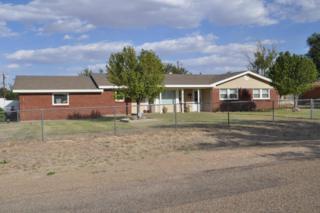 101  Rimrock Trl  , Amarillo, TX 79108 (#14-87037) :: Lyons Realty
