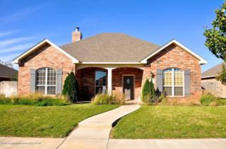 9010  Shylana Ave  , Amarillo, TX 79119 (#14-87064) :: Lyons Realty