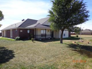 14107  Fm-2186  , Amarillo, TX 79119 (#14-87341) :: Caprock Realty Group