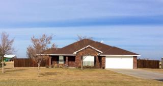 800  Mcafee Rd W , Amarillo, TX 79118 (#14-87757) :: Lyons Realty