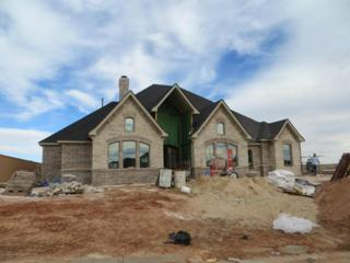 6404  Basswood Ln  , Amarillo, TX 79124 (#15-88531) :: Lyons Realty