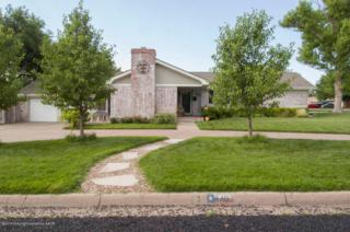 3101  Sunlite St  , Amarillo, TX 79106 (#15-89177) :: Lyons Realty
