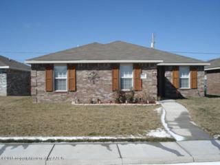 7202  Explorer Trail  , Amarillo, TX 79118 (#15-89178) :: Lyons Realty