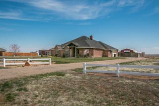 5701  Mesquite Springs Trl  , Amarillo, TX 79119 (#15-89591) :: Lyons Realty