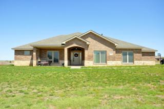 19151  Blue Creek Dr  , Canyon, TX 79015 (#15-90095) :: Caprock Realty Group