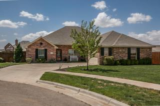 6400  Lexis St  , Amarillo, TX 79119 (#15-90169) :: Caprock Realty Group