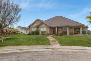 2701  River Birch  , Amarillo, TX 79124 (#15-90492) :: Caprock Realty Group