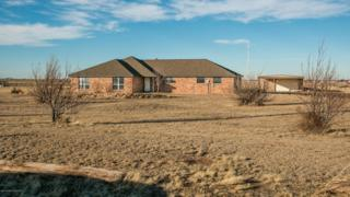 7514  County Road 283 W , Canyon, TX 79015 (#15-90720) :: Lyons Realty