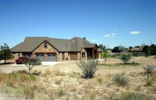 431  Palomino  , Amarillo, TX 79118 (#14-86940) :: Lyons Realty