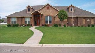 9050  Bridle Trails Dr  , Amarillo, TX 79119 (#14-87865) :: Caprock Realty Group